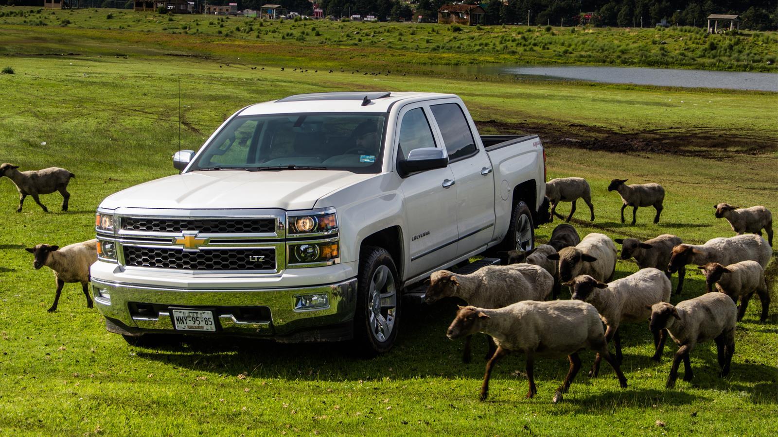 Chevrolet Cheyenne 2014 Autocosmos Com