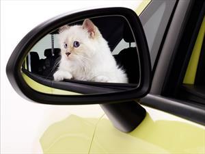 El gato de Karl Lagerfeld posa para el calendario 2015 del Opel Corsa