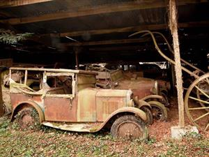 Video: Un tesoro de 15 millones de Euros en autos clásicos abandonados