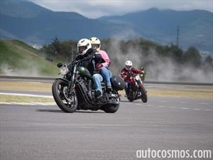 Motociclistas podrían usar casco con su número de placa