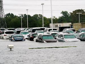 Huracán Harvey destruye medio millón de autos en Estados Unidos