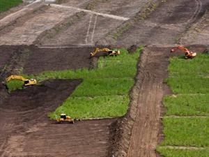 FIAT comienza a construir su nueva fábrica en Brasil