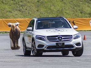 Continental realiza la segunda edición del Ride & Drive México