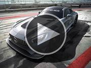 Video: Mercedes AMG GT3 Edition 50, un festejo a lo grande