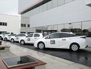 Toyota suma a Chile como parte de su programa en desarrollo de nuevos autos