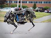Wildcat un robot de cuatro patas más rápido que Bolt