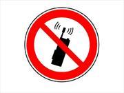 ¡Concéntrate en el volante, no en el teléfono celular!
