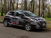Ruta a Pikes Peak 2013: Nuestro Peugeot 208 2014