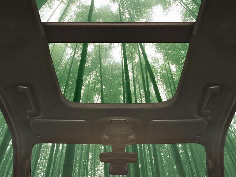 Ford piensa usar bambú en sus autos