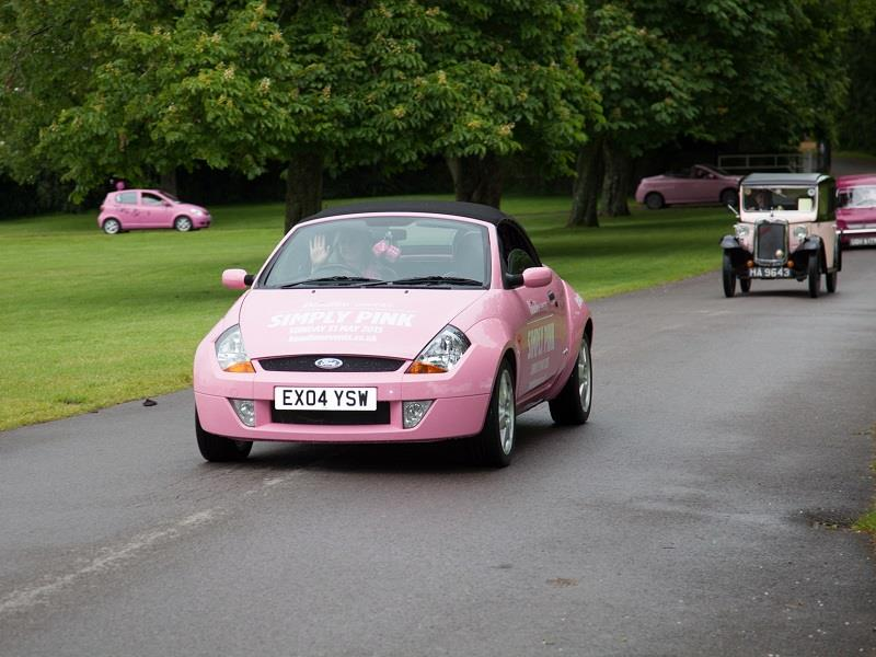 Simply Pink rally