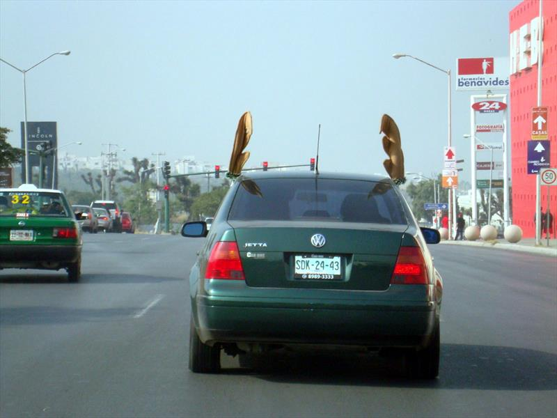 Cuernos de reno, cola de diablo, pestañas