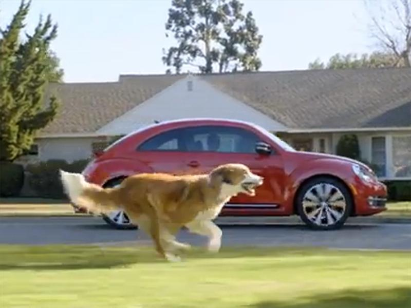 Top 10: Volkswagen Beetle -The Dog Strikes Back-
