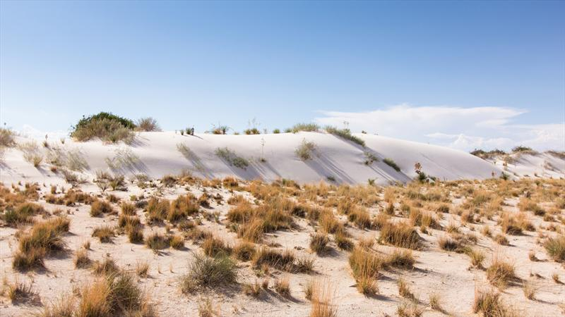 Ruta a Pikes Peak 2013: Día 7