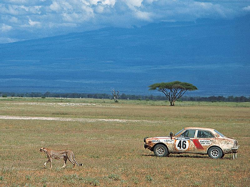 Top 10: Rally Safari (Africa)