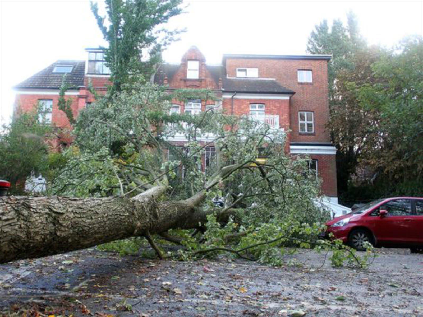 Tips para proteger los automóviles ante la llegada de un huracán
