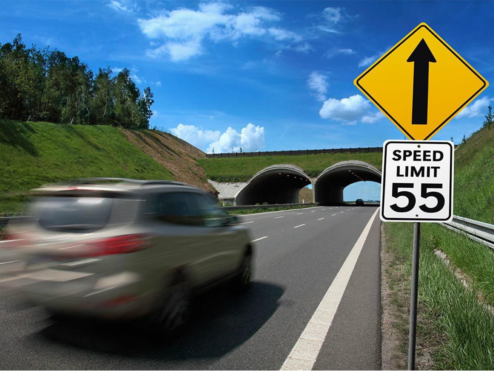 ¿Por qué es peligroso manejar con exceso de velocidad?