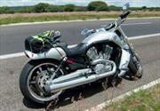 Harley Davidson V-Rod Muscle 2010 a prueba