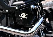 Harley Davidson Cross Bones 2010 a prueba