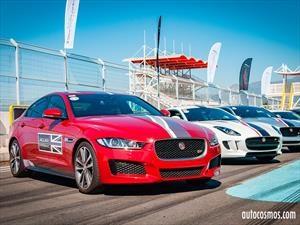 Jaguar estira sus piernas en el Autódromo de Codegua