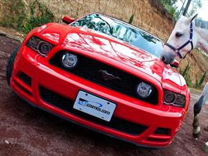 El Ford Mustang ya es una veterana estrella de cine