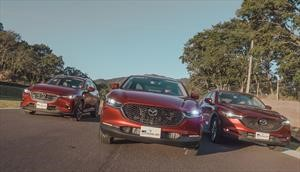 Mazda CX-30 vs CX3 vs CX-5, cómo distinguirlas