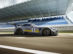 Mirá al Mercedes-AMG GT3 en acción