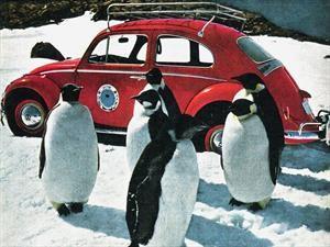 VW Beetle fue el primer auto en andar por la Antártica