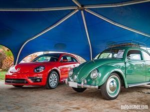 Galería: Día del Escarabajo 2017