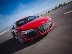 Audi R8 V10 Plus en la pista