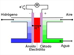 ¿Cómo funcionan las celdas de hidrógeno?