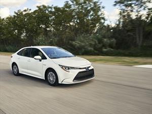 Toyota Corolla Hybrid, uno más en la lista