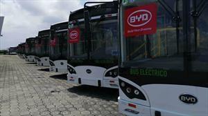 BYD: Guayaquil ahora cuenta con una flota de buses eléctricos