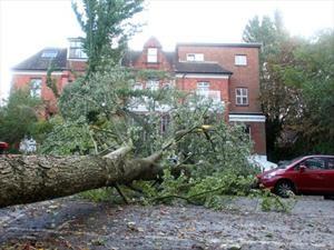 Así puedes proteger tu carro ante un huracán