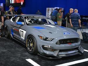 Ford Mustang GT4, preparado para ganar
