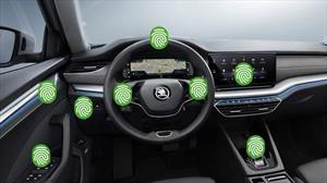 Productos adecuados para desinfectar su carro