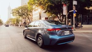Manejamos el Toyota Corolla Híbrido 2020