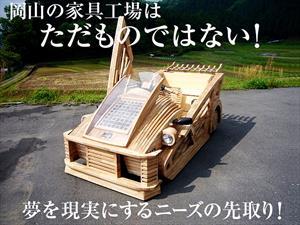 En Japón se puede comprar un auto hecho de madera