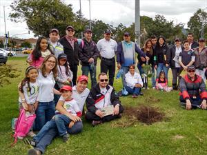 Bridgestone de Colombia realiza primera jornada de arborización