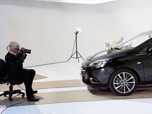 El calendario 2015 del Opel Corsa tiene a un gato como protagonista