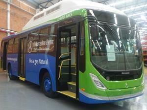 Mercedes-Benz llevó a la Costa Atlántica línea de buses a gas
