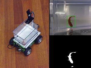 Ahora tu pez puede manejar su propio acuario motorizado