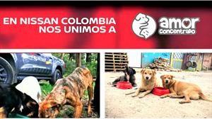 Nissan Colombia se solidariza con los animales abandonados en la cuarentena