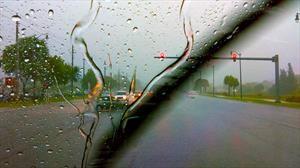 Con estas lluvias, te decimos cómo manejar y los cuidados que debes tener