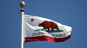 Distribuidores identificarán autos accidentados con etiquetas en California