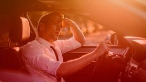 A qué se debe que en verano los autos pueden ser una trampa mortal