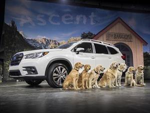 Video: Subaru Ascent, la más grande de la historia