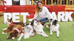 Jornada de adopción de mascotas en la vitrina de Nissan en Morato