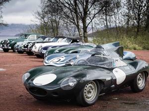 Jaguar celebra sus 80 años en la Mille Miglia