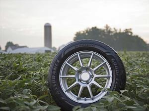 Econeumáticos: Goodyear desarrolla compuestos con soja