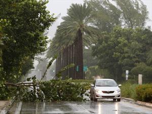 10 consejos para proteger el automóvil de un huracán